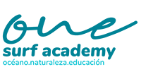 one surf academy